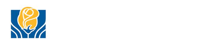 brampton logo 15223312542411
